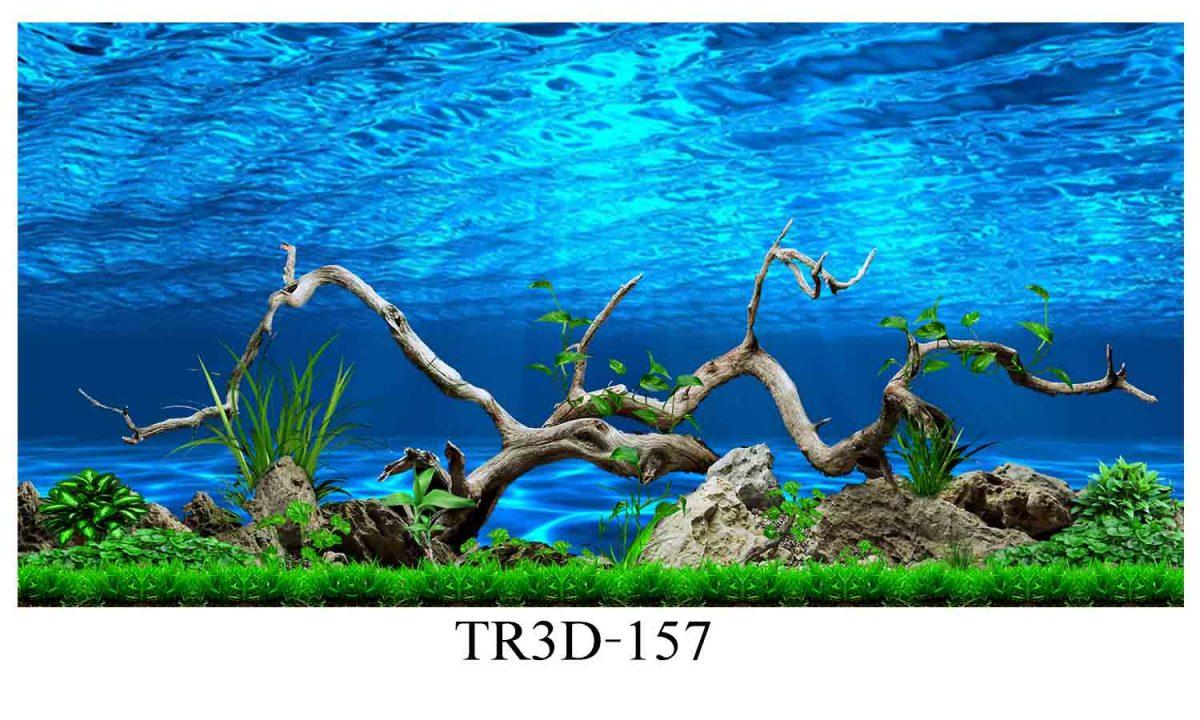 157 1200x720 - Tranh hồ cá 157