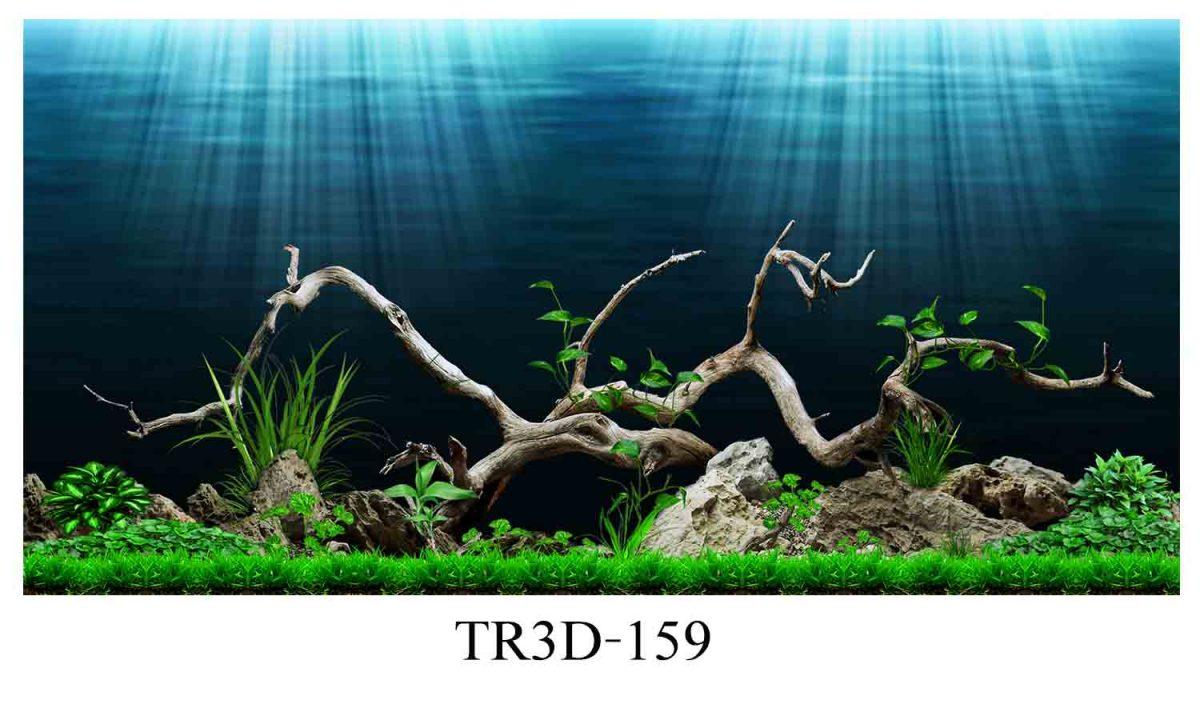159 1200x720 - Tranh hồ cá 159