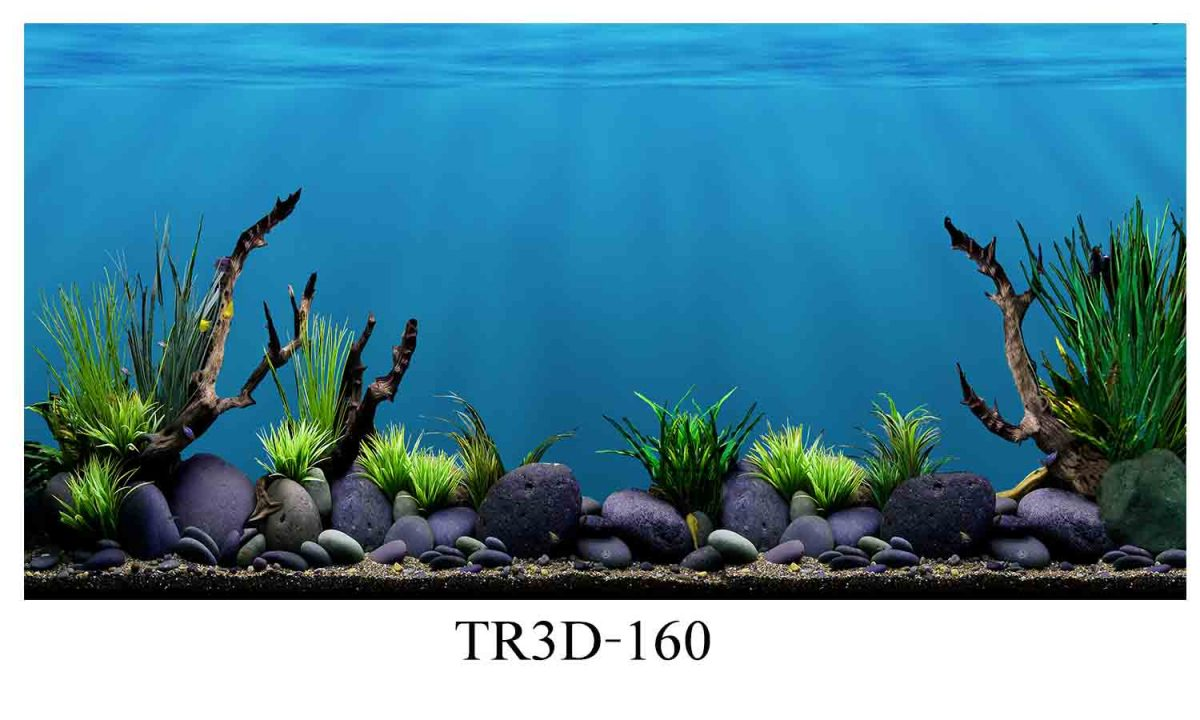 160 1200x720 - Tranh hồ cá 160