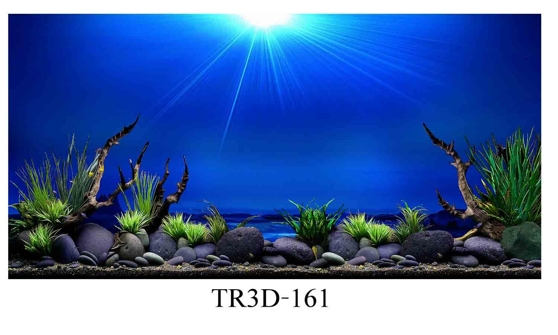 161 - Tranh hồ cá 161