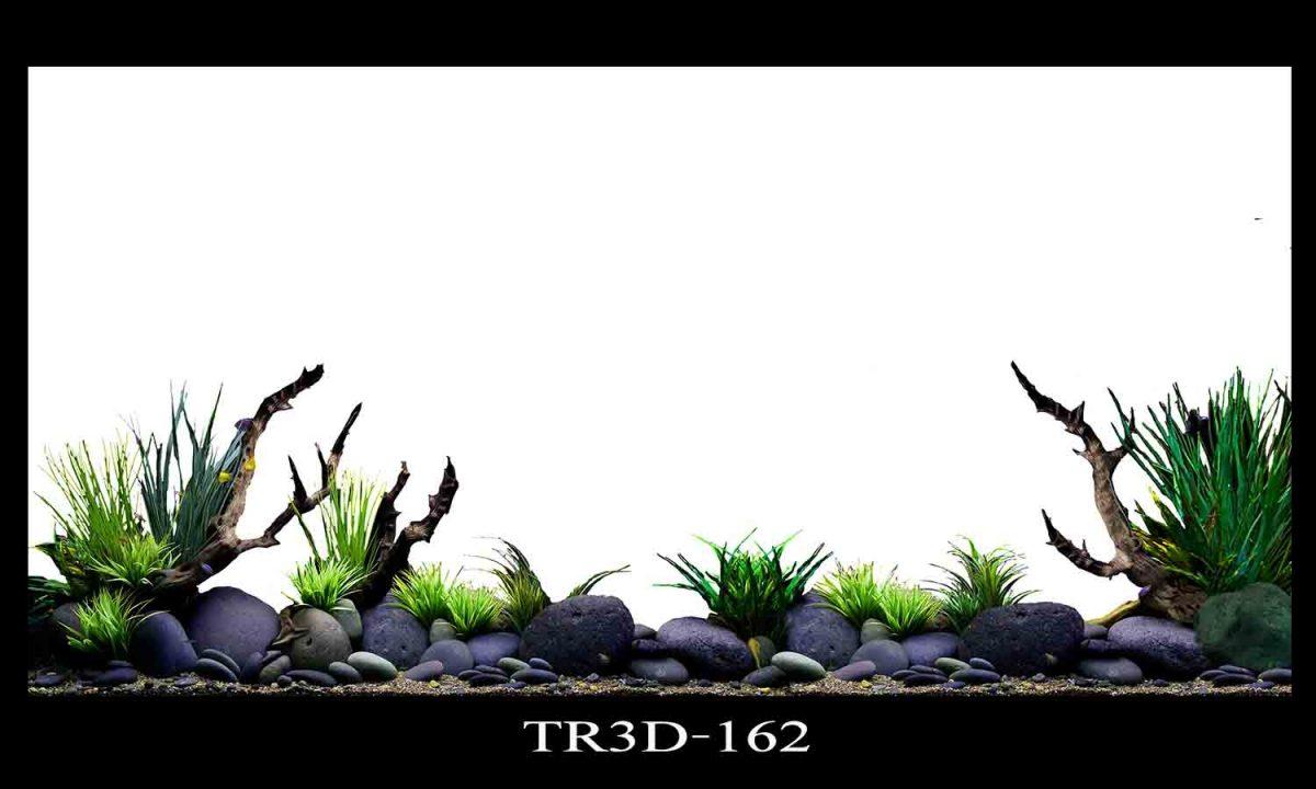 162 1200x720 - Tranh hồ cá 162