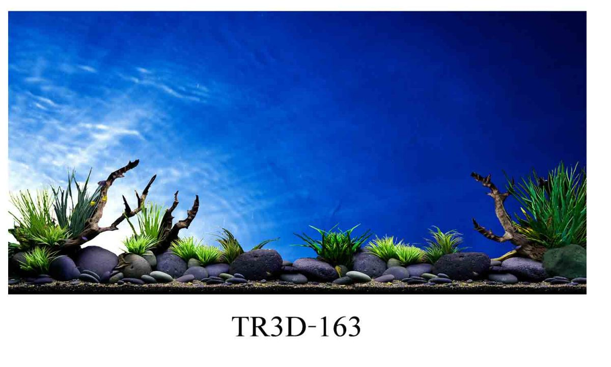 163 1200x720 - Tranh hồ cá 163