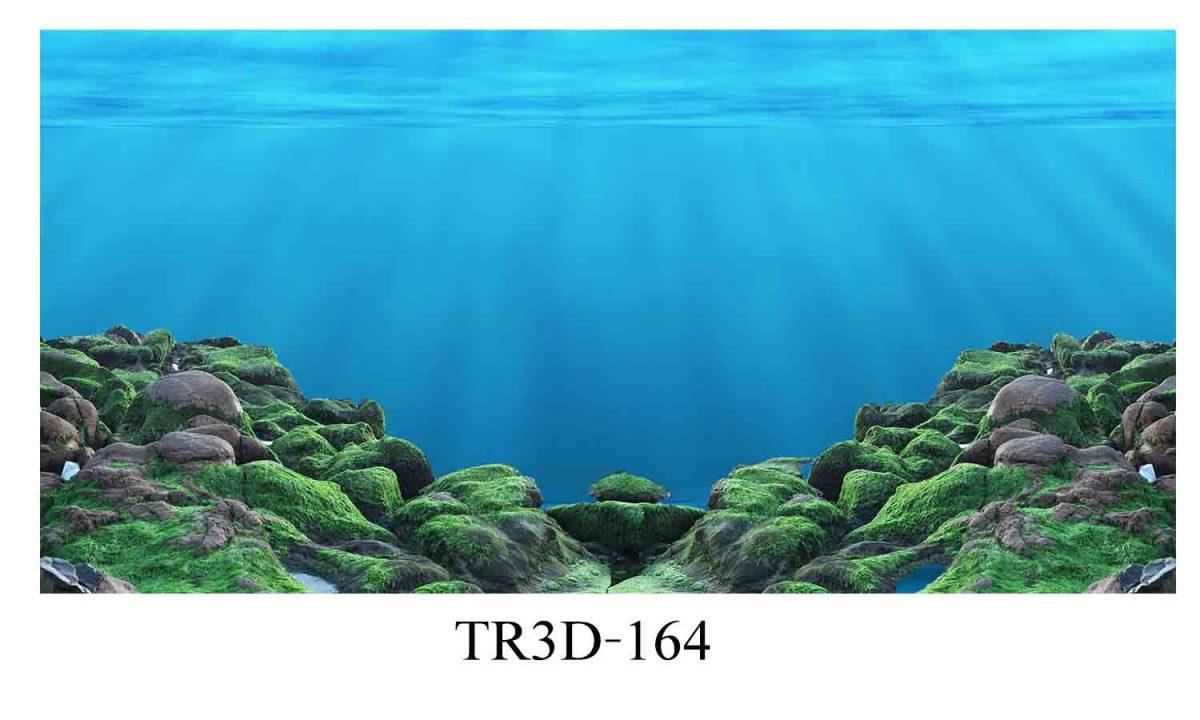 164 1200x720 - Tranh hồ cá 164