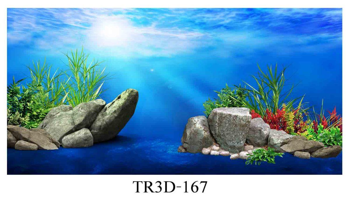 167 1200x720 - Tranh hồ cá 167