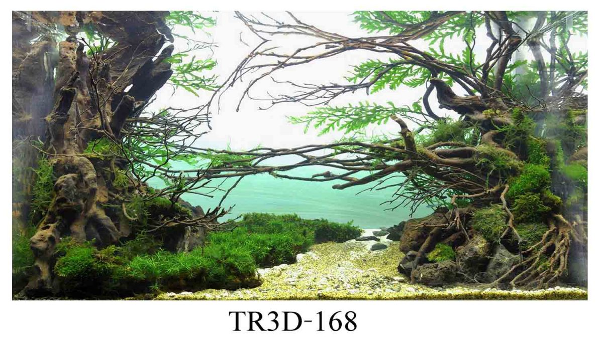168 1200x720 - Tranh hồ cá 168