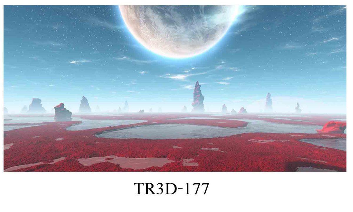 177 1200x720 - Tranh hồ cá 177