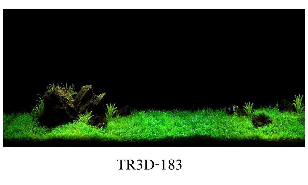 183 1200x720 - Tranh hồ cá 183