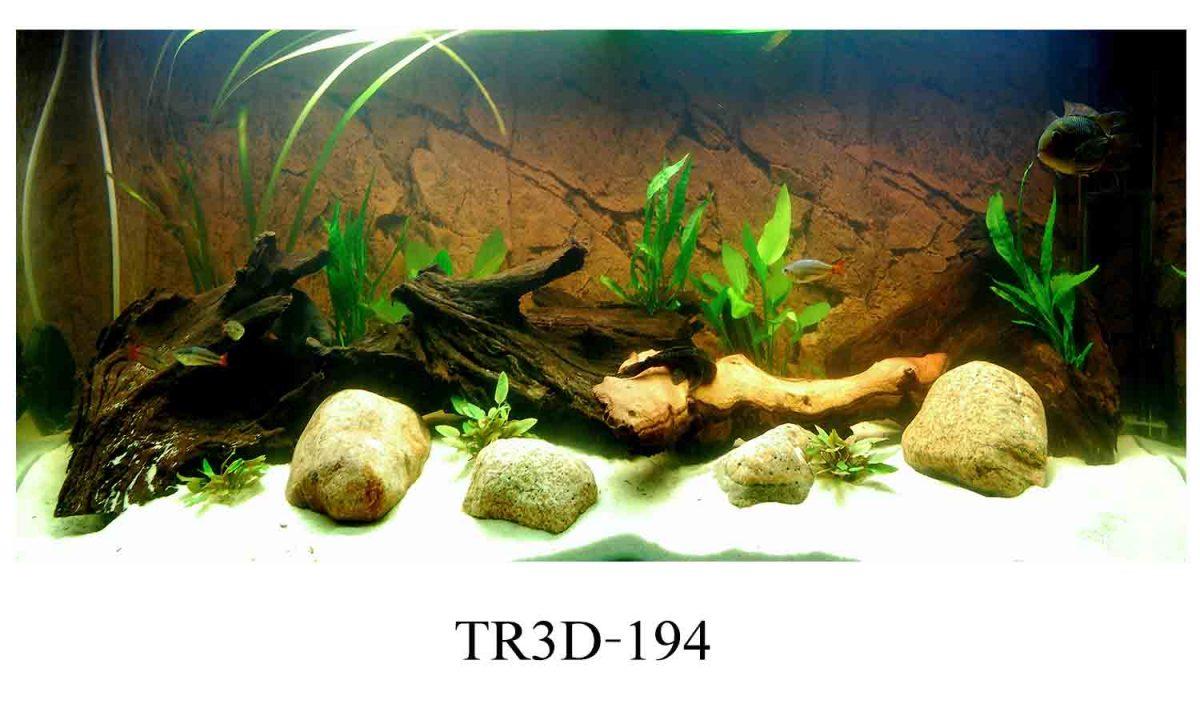 194 1200x720 - Tranh hồ cá 194