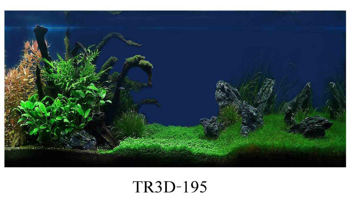 195 1200x720 - Tranh hồ cá 195
