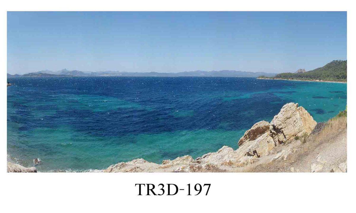 197 1200x720 - Tranh hồ cá 197