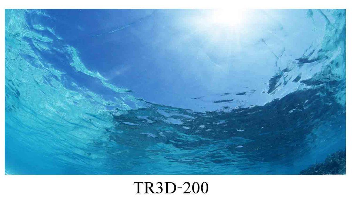 200 1200x720 - Tranh hồ cá 200