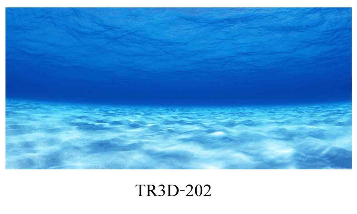 202 1200x720 - Tranh hồ cá 202