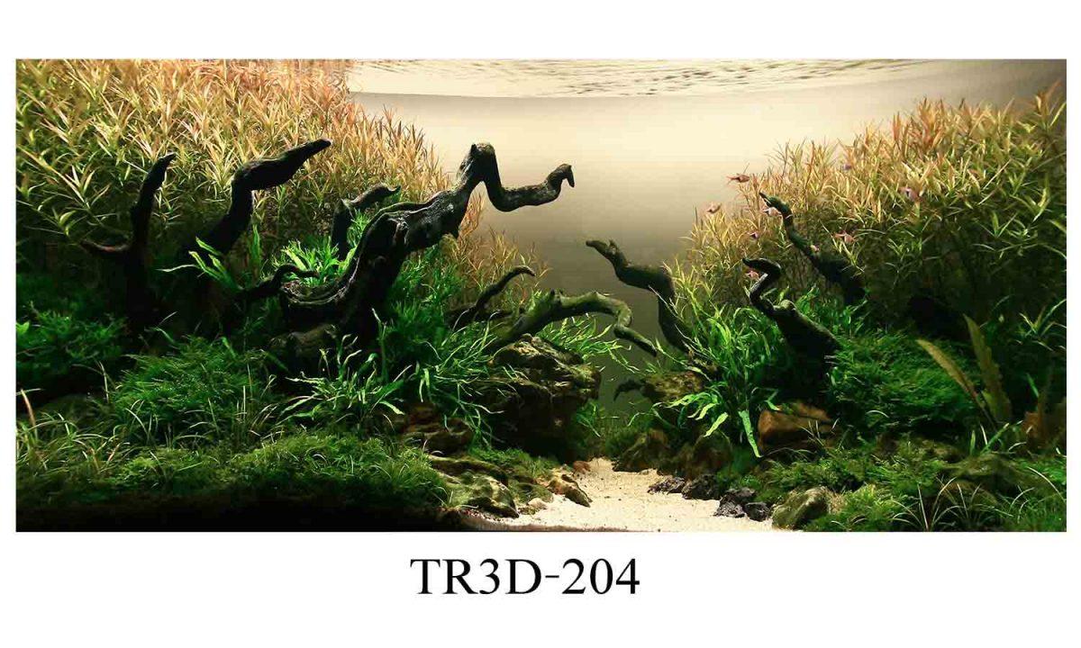 204 1200x720 - Tranh hồ cá 204