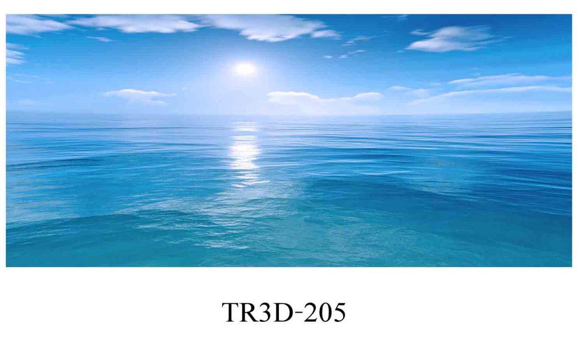 205 1200x720 - Tranh hồ cá 205