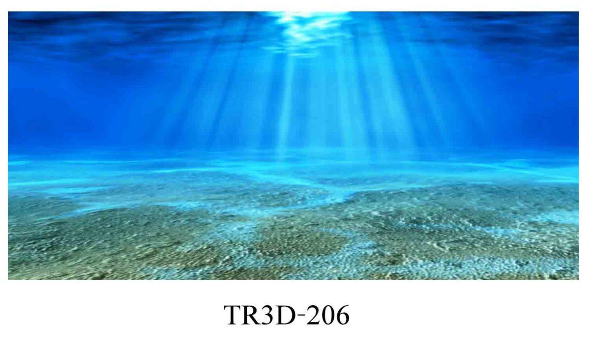 206 1200x720 - Tranh hồ cá 206