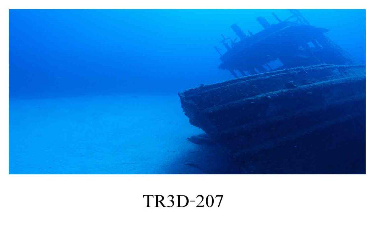 207 1200x720 - Tranh hồ cá 207
