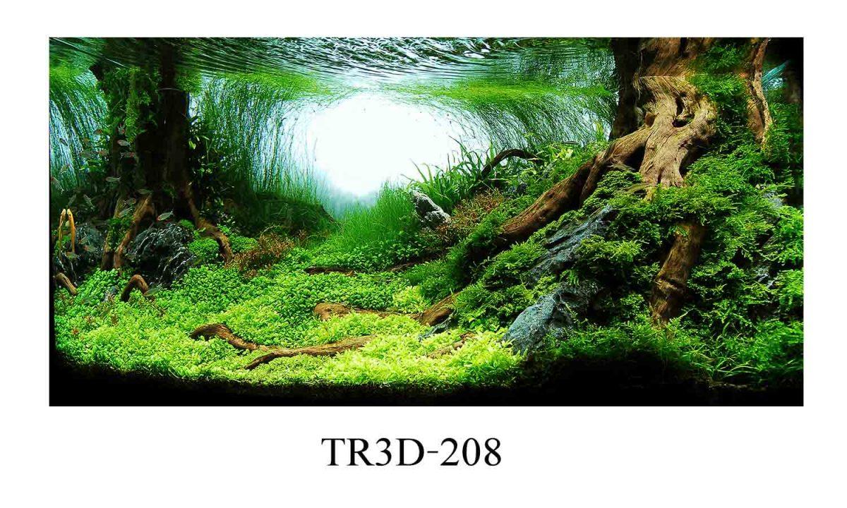 208 1200x720 - Tranh hồ cá 208