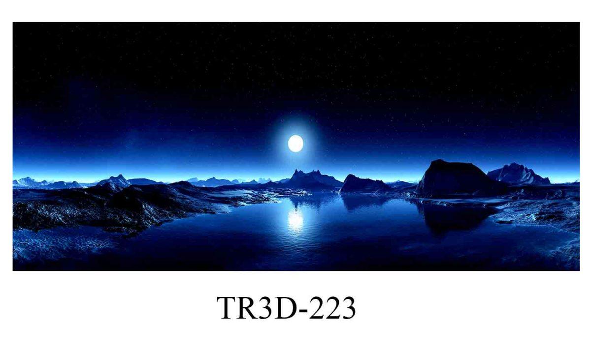 223 1200x720 - Tranh hồ cá 223