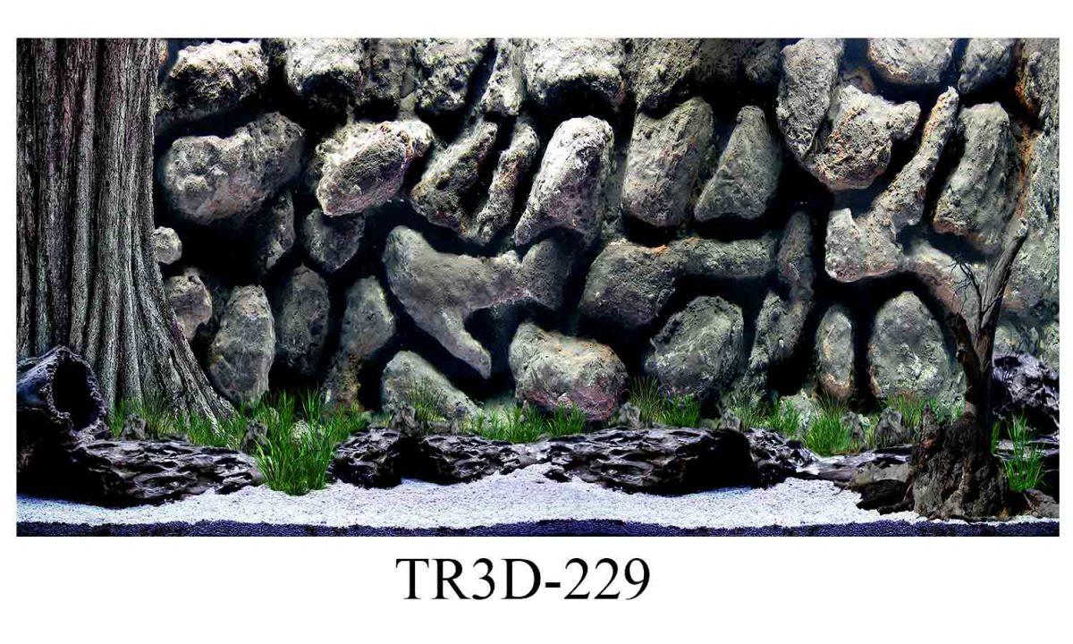 229 1200x720 - Tranh hồ cá 229