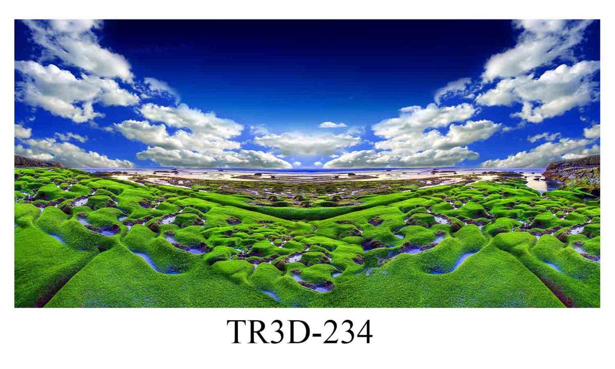 234 1200x720 - Tranh hồ cá 234