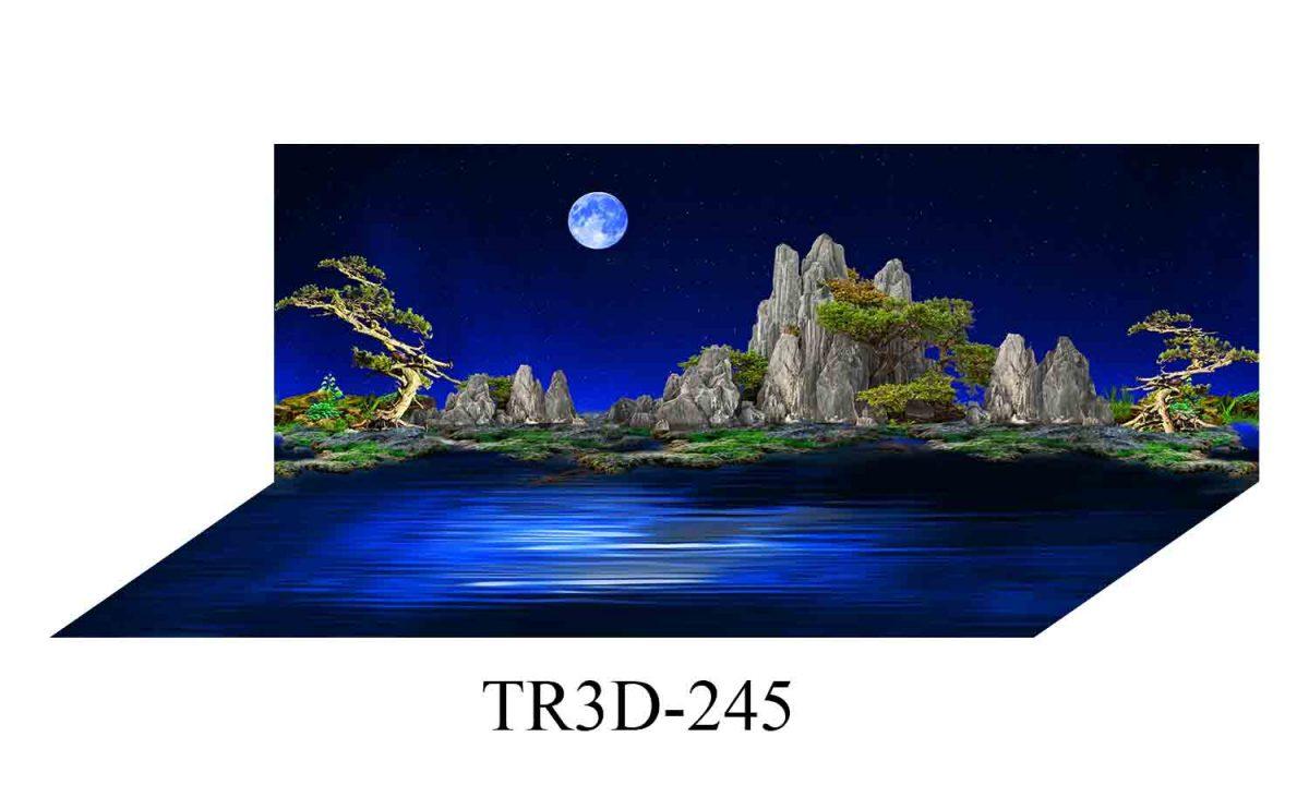 245 1200x720 - Tranh hồ cá 245