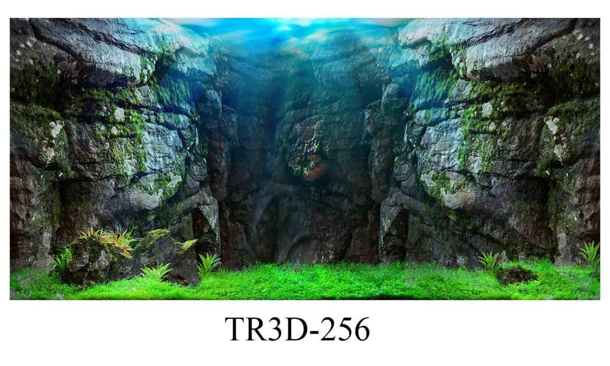 256 1200x720 - Tranh hồ cá 256