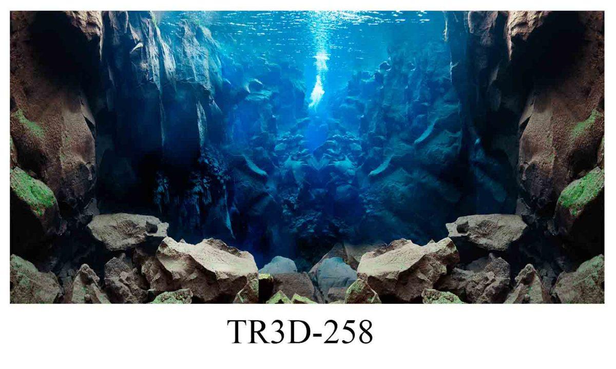 258 1200x720 - Tranh hồ cá 258