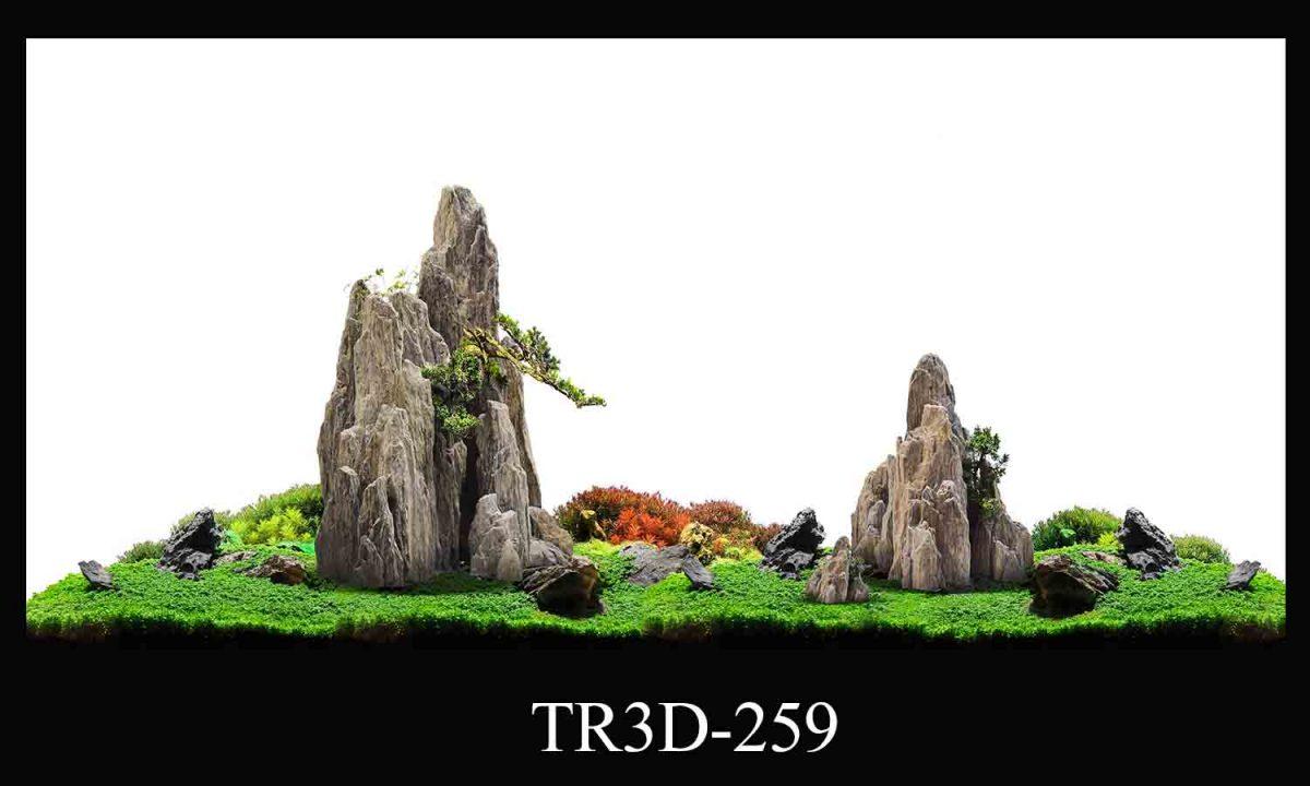 259 1200x720 - Tranh hồ cá 259