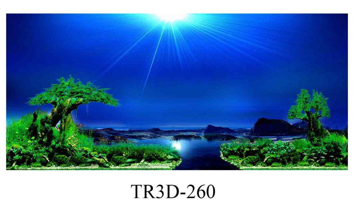 260 1200x720 - Tranh hồ cá 260