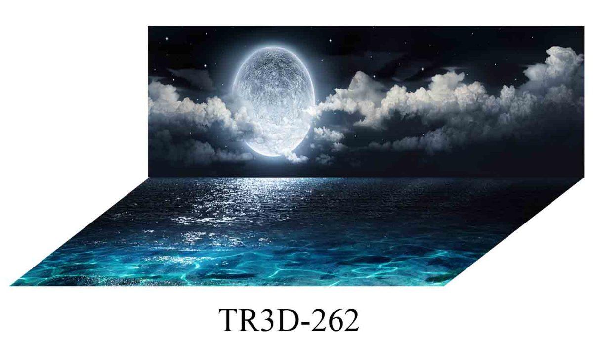 262 1200x720 - Tranh hồ cá 262