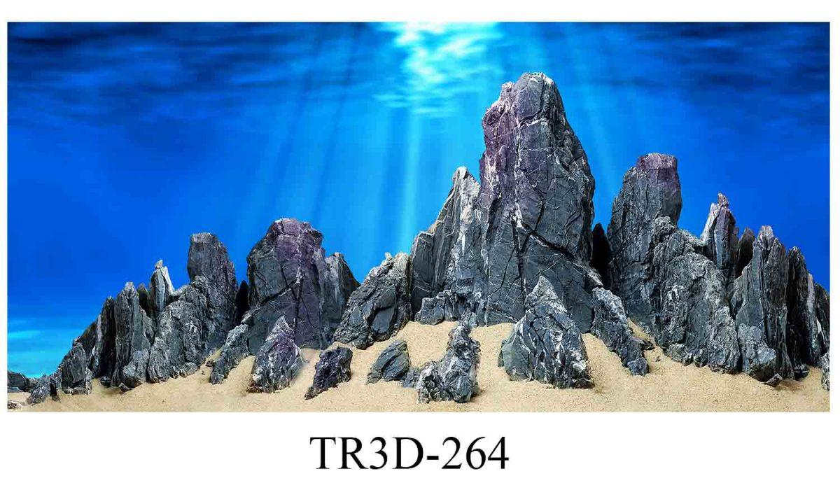 264 1200x720 - Tranh hồ cá 264