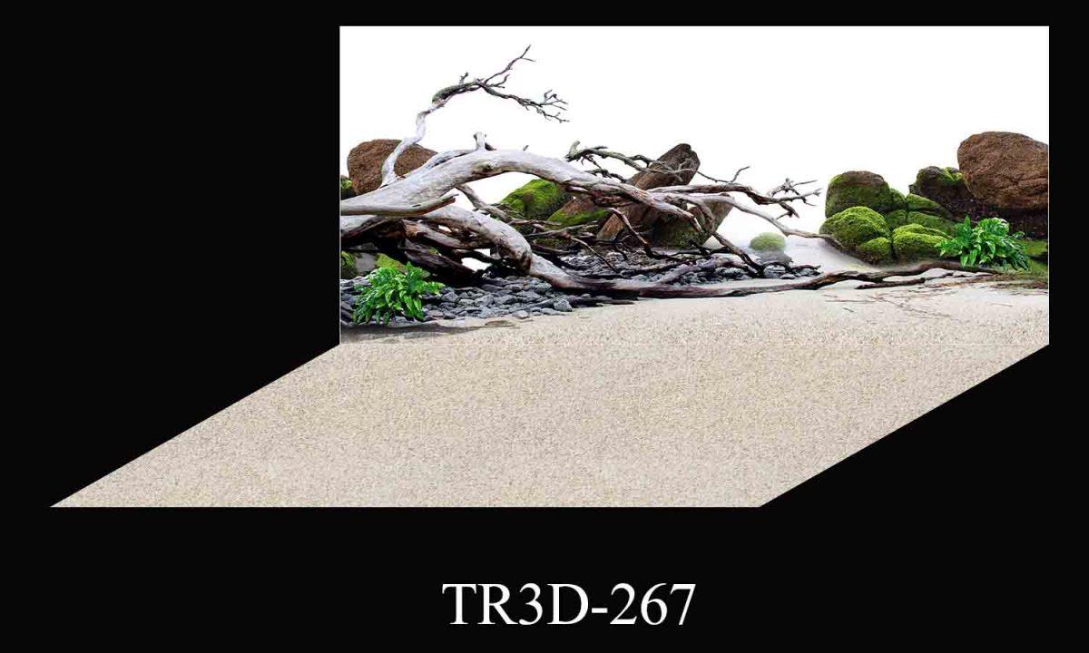 267 1200x720 - Tranh hồ cá 267