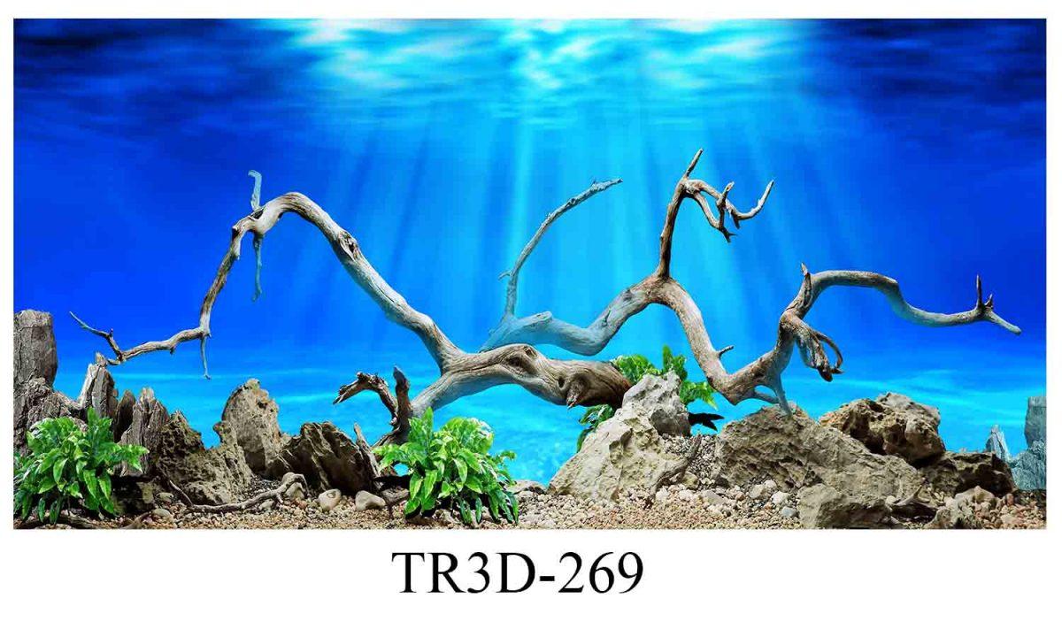 269 1200x720 - Tranh hồ cá 269