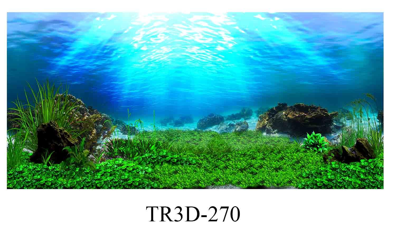 270 - Tranh hồ cá 270