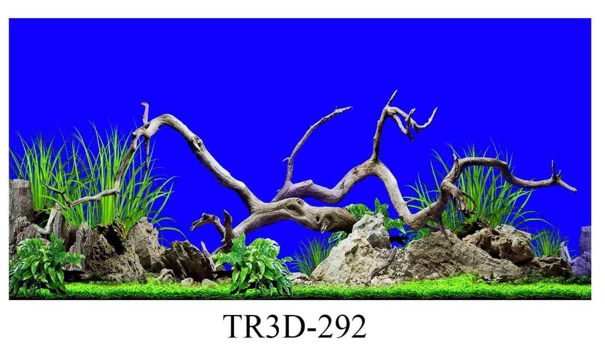 292 1200x720 - Tranh hồ cá 292