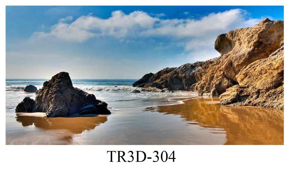 304 1200x720 - Tranh hồ cá 304