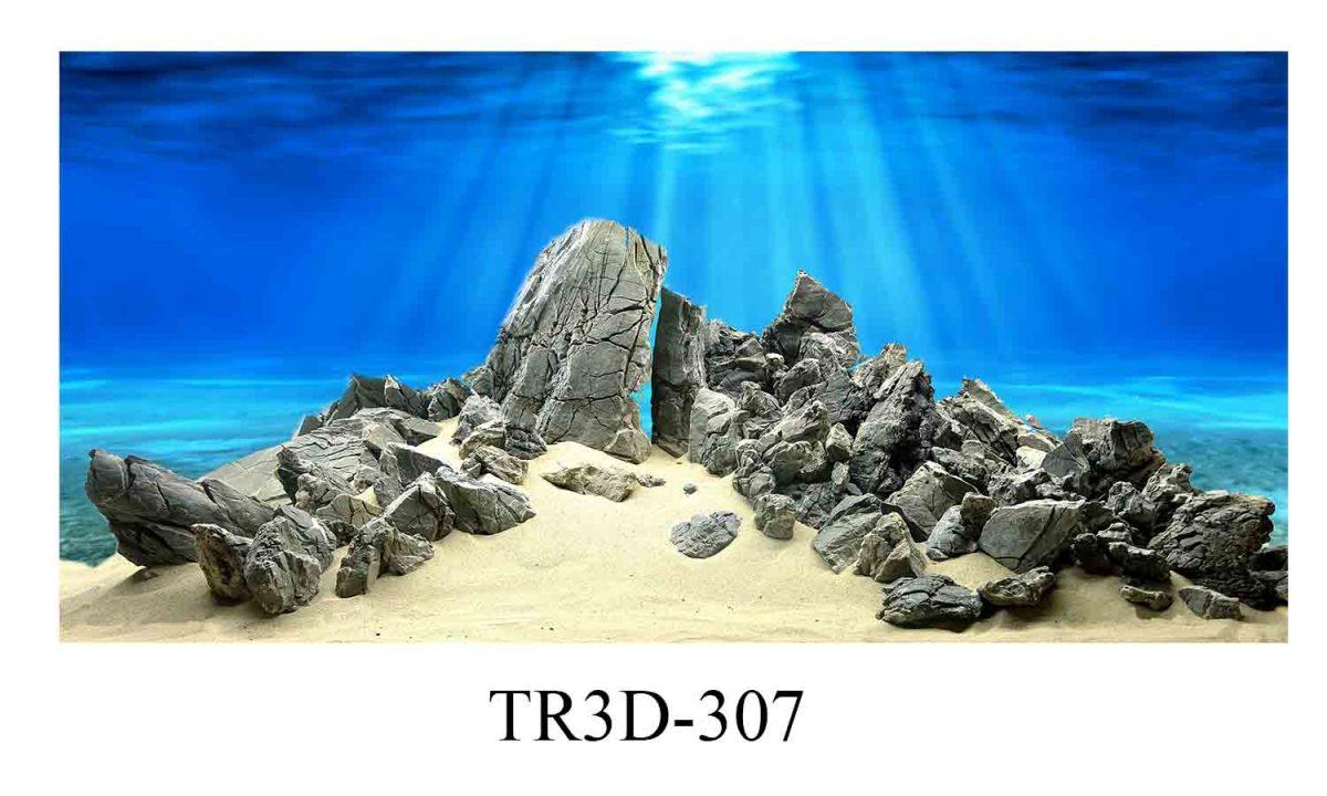 307 1200x720 - Tranh hồ cá 307