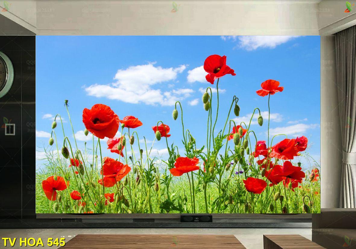 TV Hoa 545 - Tranh về hoa TV Hoa 545