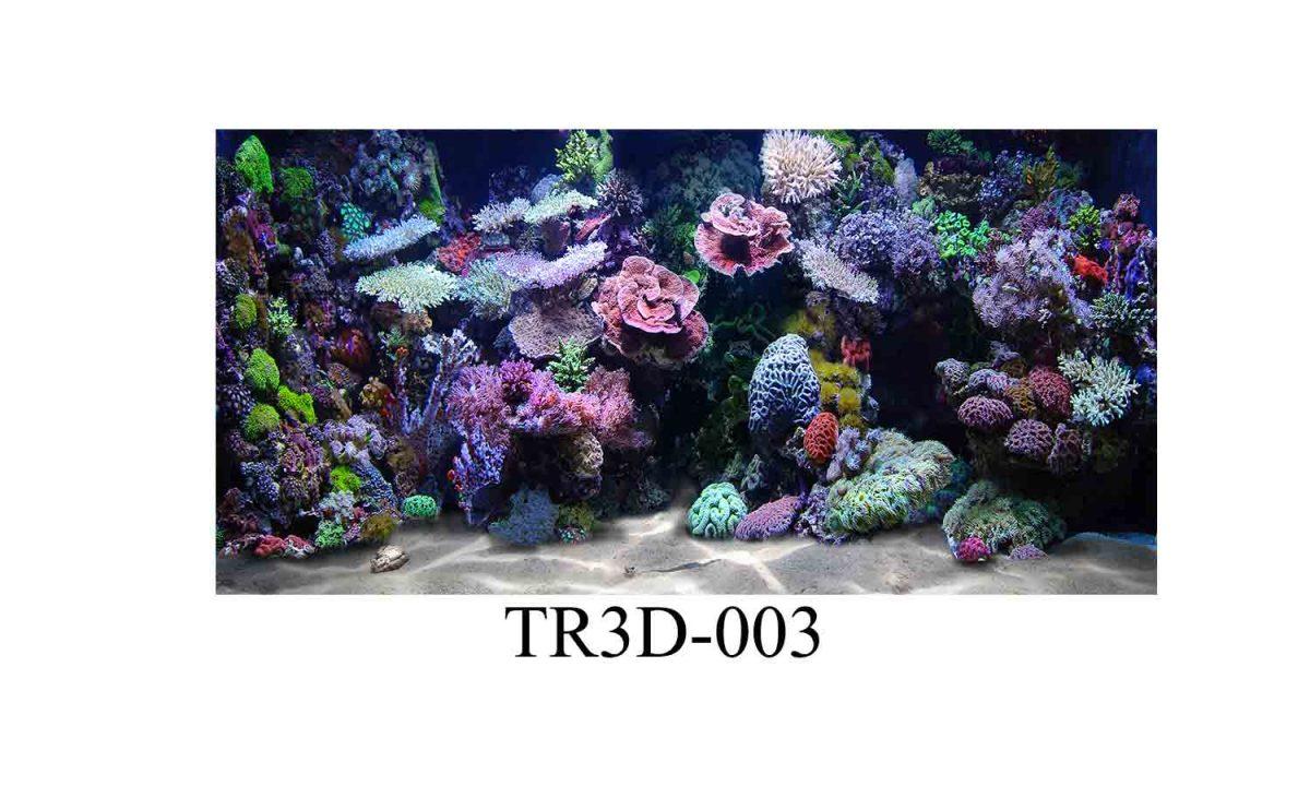 tranh 3D hồ cá