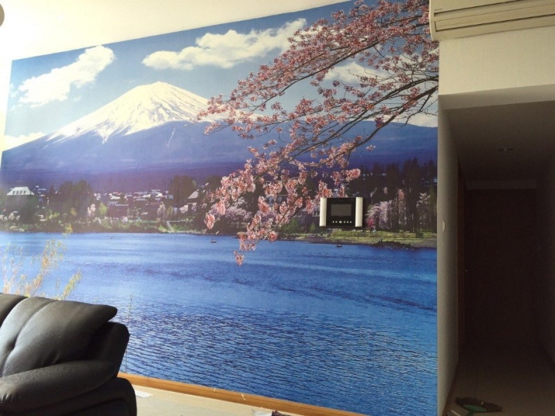 tranh 3d 1 1 - Tranh dán tường 3d khắc phục không gian nhỏ hẹp