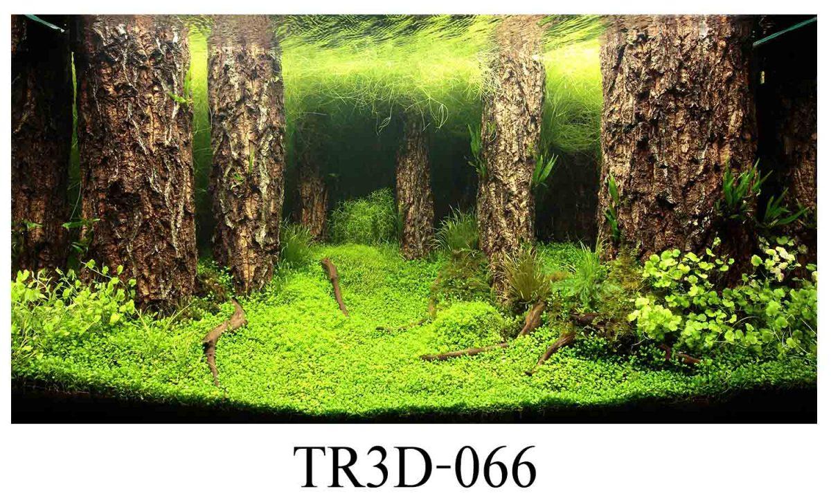 tranh 3D tphcm
