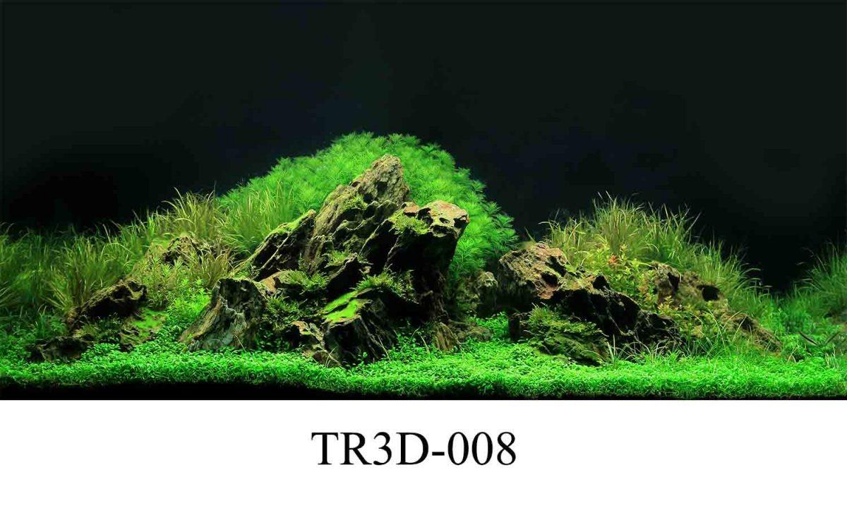 tranh ho ca 1200x720 - Cách bố trí tranh hồ cá 3D sao cho đẹp mắt