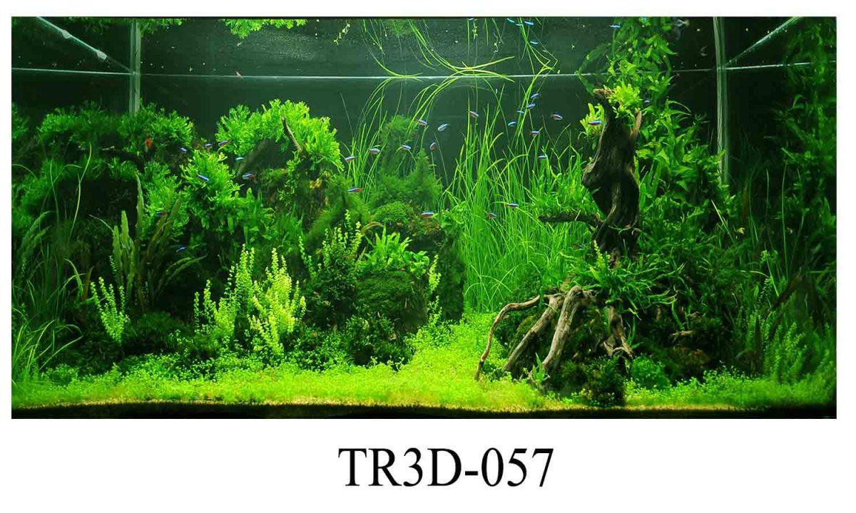 tranh 3d hồ cá 2 1200x720 - Những mẫu tranh 3d hồ cá đẹp nhất năm 2020