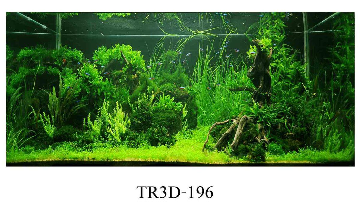 tranh hc 2 1200x720 - Bố trí tranh hồ cá theo đúng phong thủy