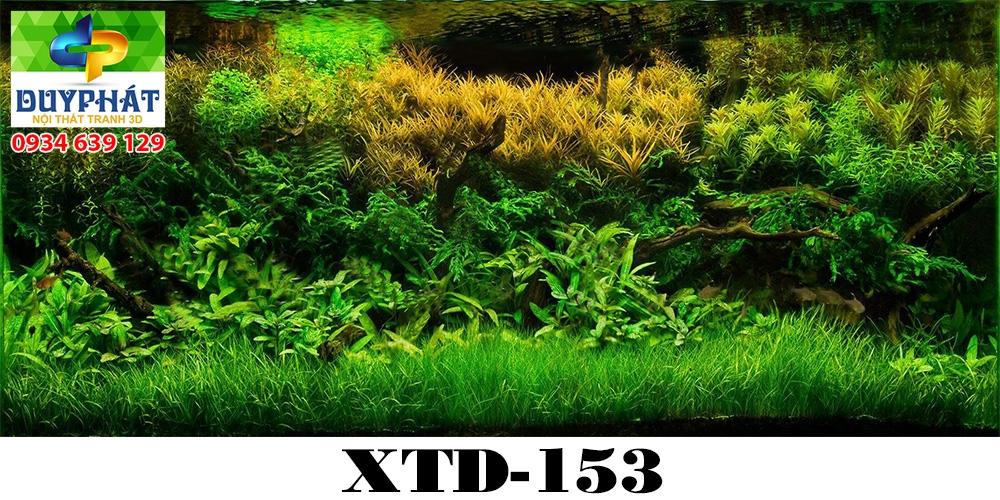 Tranh hồ cá THC493 đẹp cho nhà bạn