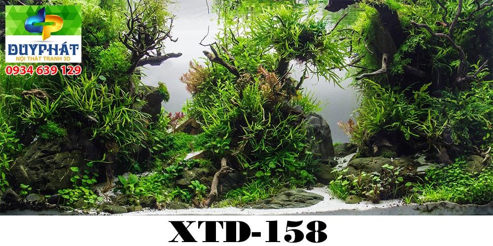 Tranh hồ cá THC502 đẹp cho nhà bạn