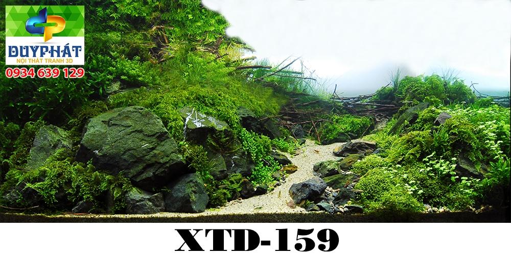 Tranh hồ cá THC504 đẹp cho nhà bạn