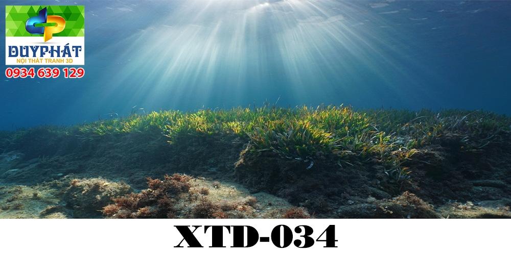 Tranh hồ cá THC600 đẹp cho nhà bạn