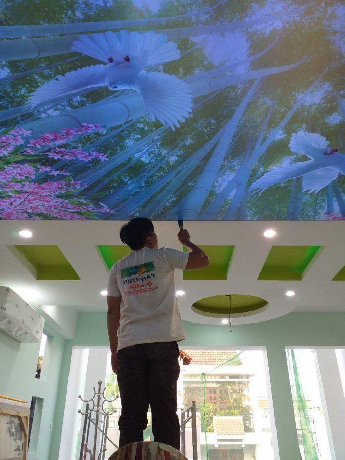 tran xuyen sang 3 675x900 - Điều kiện lắp đặt đảm bảo chất lượng cho trần xuyên sáng